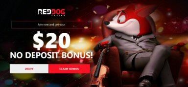 $20 No Deposit Bonus At Red Dog Casino
