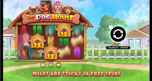 The Dog House Video Slot Review By Pragmatic Play