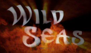 Wild Seas Video Slot Review By Elk Studios