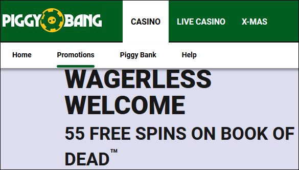 piggybankwelcome55spins-png.7499